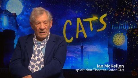 «Cats»-Darsteller Ian McKellen mag keine Katzen